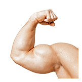 Strong, Muscular build, Bicep, Biceps