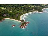 Hotel plant, Seychelles