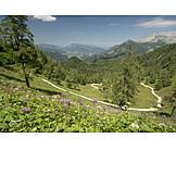 Trail, Hiking area, National park berchtesgaden