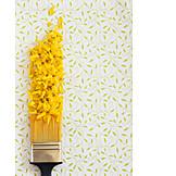Pattern, Paint, Floral