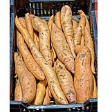 Potato variety, Yam