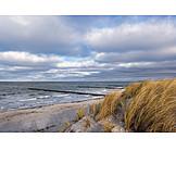 Beach, Coast, Baltic sea